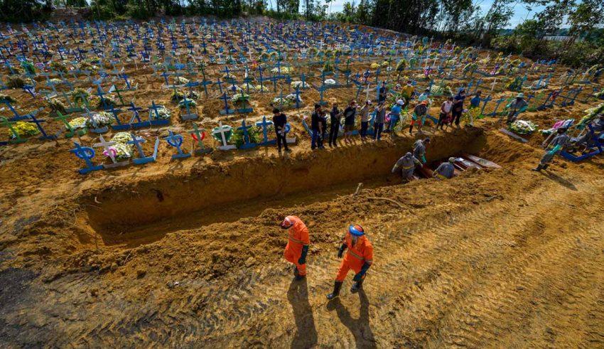 Segunda onda da covid-19 no Brasil é 'risco iminente', alerta Nicolelis